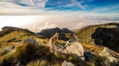 Idées de randonnées dans le Var pour les seniors
