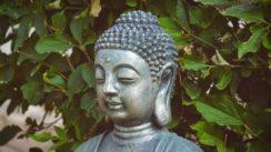 Le Bouddhisme est bénéfique pour la santé mentale et c'est prouvé scientifiquement !