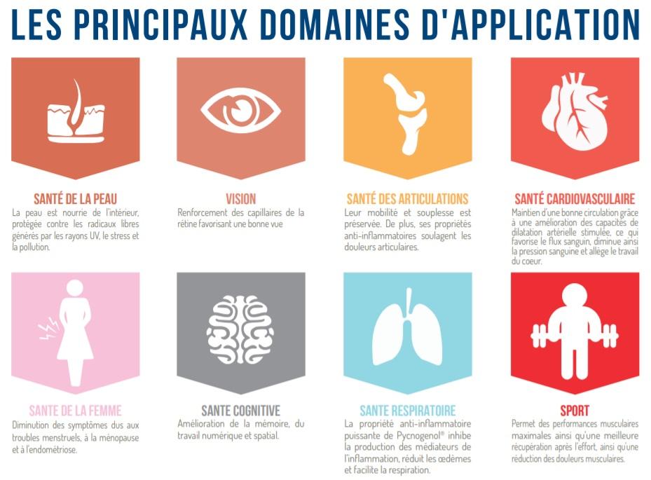 pycnogenol de nombreux domaine applications